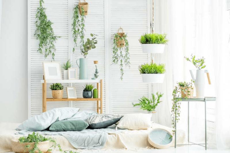 déco printemps avec un matelas blanc par terre couvert de coussins dans une pièce décorée de plantes vertes de différentes taille