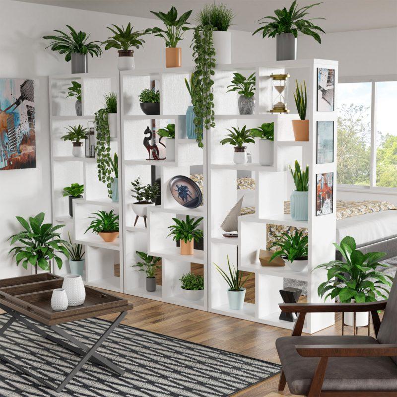 séparation entre chambre et salon avec étagères portant des plantes vertes