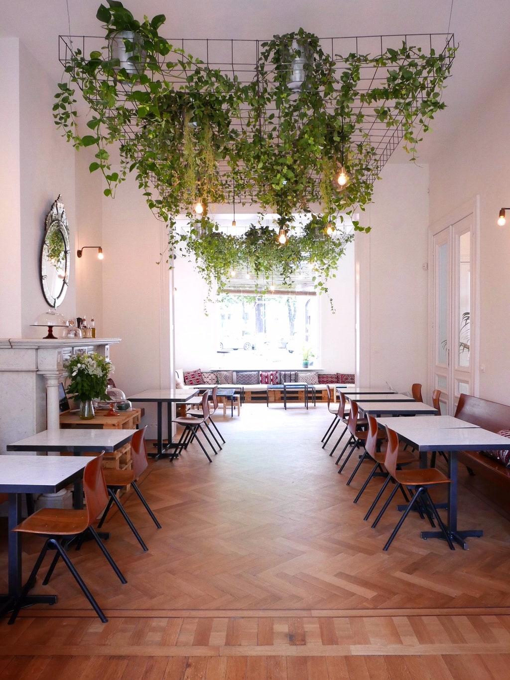 plafond végétal pour ce restaurant