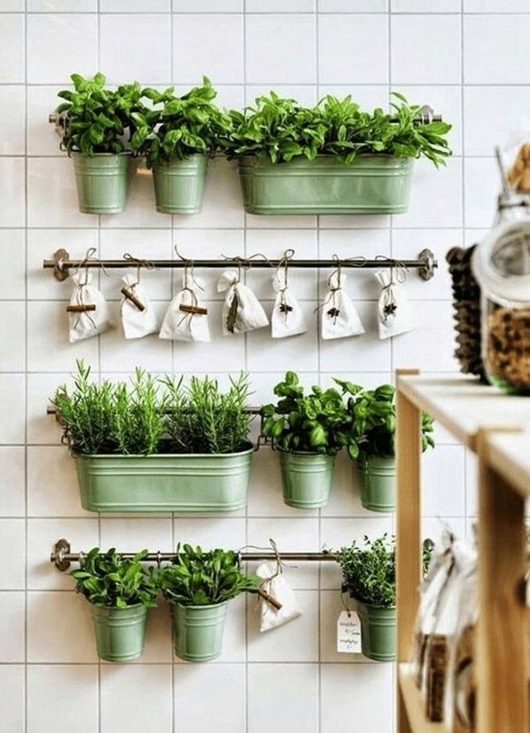 petites plantes vertes dans des pots verts accrochés à un mur en faïence