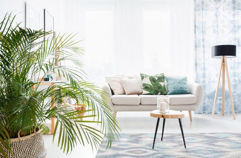 salon scandinave en déco printemps avec plantes vertes et coussins de couleurs