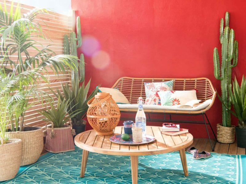 un terrasse en déco été avec mur peint en rouge et palmiers et cactus